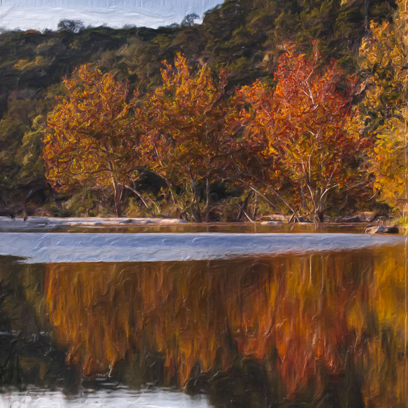 Austin photographer 365 photo project autumn painting